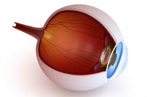 Die Voraussetzungen zum Lasern der Augen sind harte Ausschlusskriterien – wer nicht geeignet ist, sollte von einer Op absehen.