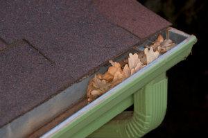 Eine regelmäßige Dachrinnenreinigung schützt vor Verstopfung der Regenrinne durch Laub und Zweige.
