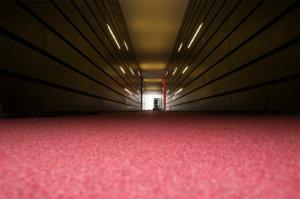 Eine Teppichbodenreinigung sollte nur von ausgebildeten Fachkräften durchgeführt werden.