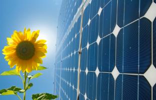 Solaranlagen erfreuen sich zunehmender Beliebtheit, da sie eine günstige und umweltfreundliche Alternative zu fossilen Energieträgern sind.