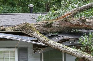 Für Sturmschäden ein Gutachter anfertigen zu lassen, zahlt sich spätestens vor Gericht aus.