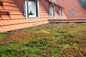 Um bei einem Gründach die anstehenden Kosten richtig zu kalkulieren, sollte sich der Hausbesitzer einen verbindlichen Kostenvoranschlag zusenden lassen.