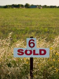 Wer Bauland kaufen möchte, sollte die Dienste eines kompetenten Immobilienmaklers in Anspruch nehmen.