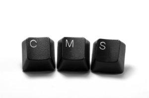 Agenturen für Webdesign nutzen TYPO3, um dem Kunden größtmöglichen Komfort zu bieten.